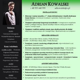 CV profesjonalne